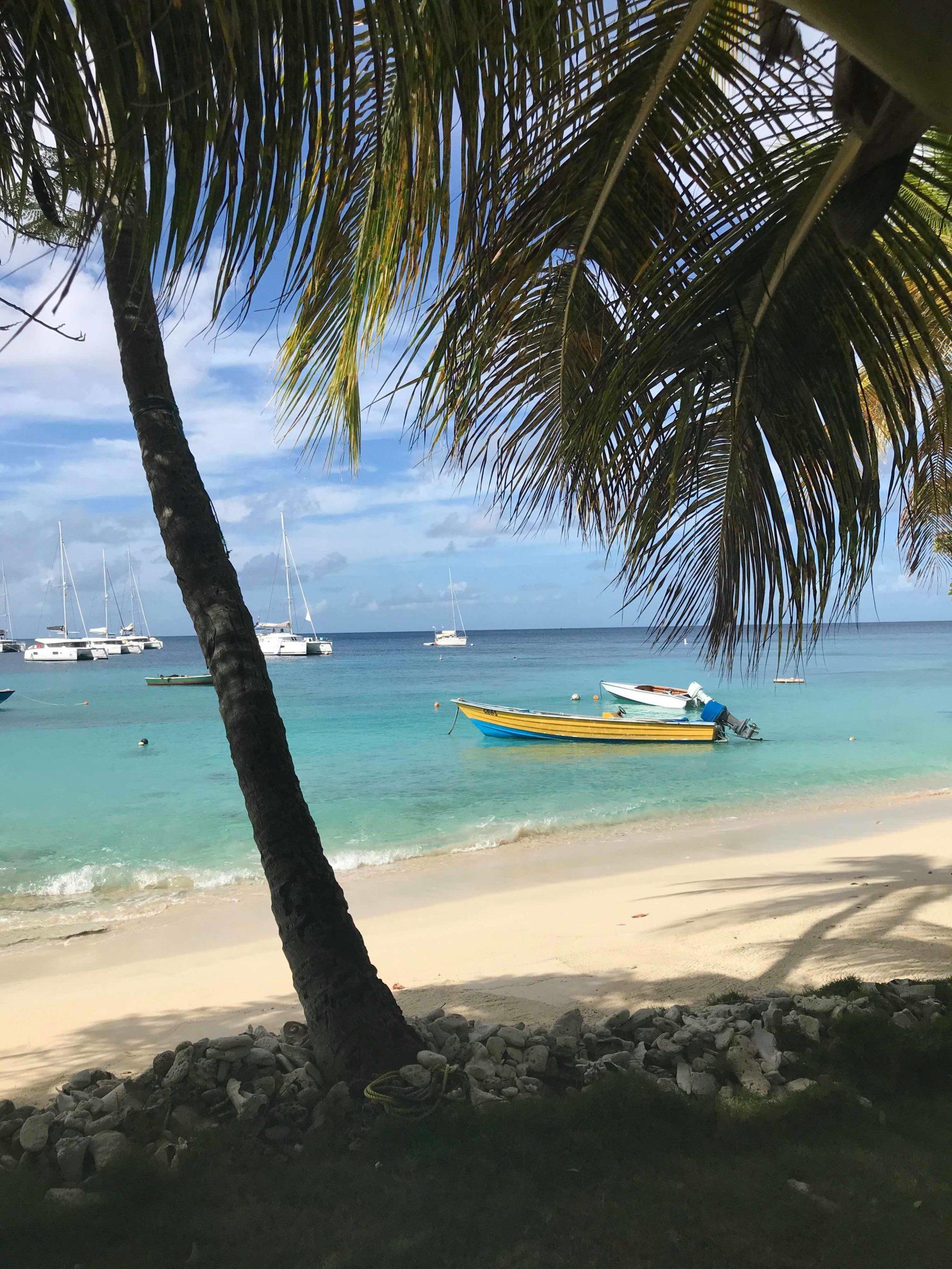 Karibik Barbara Holler